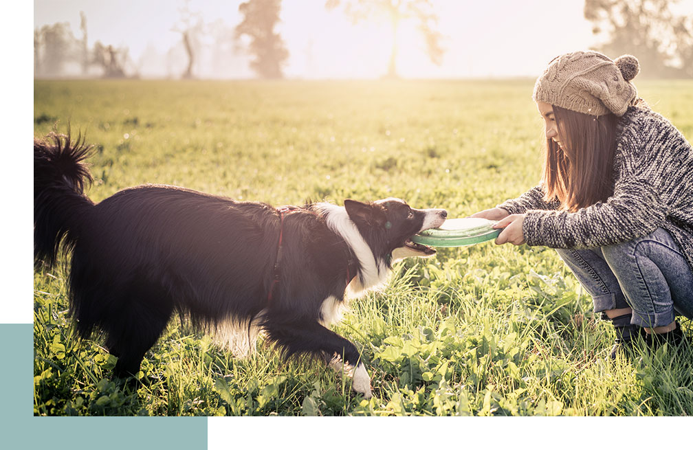 Girl playing with a frisbee and her dog in a park